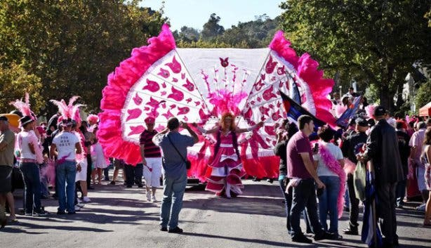 Pink Loerie Street Parade