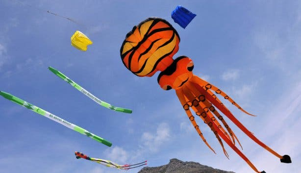 Cape Town International Kite Festival 1