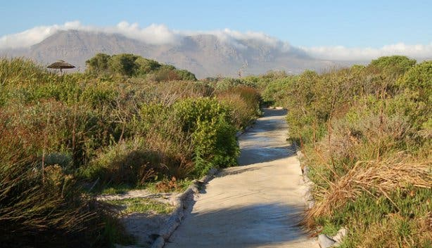 False Bay Nature Reserve