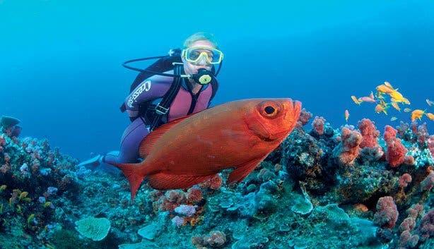 Madiba scuba diving