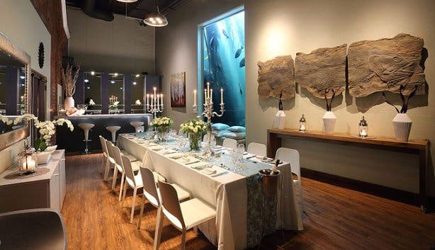 Two Oceans Aquarium Table 3