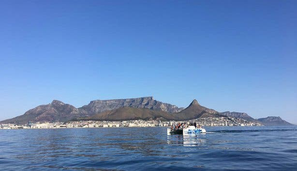 Vista Parties Ocean Adventurer 2