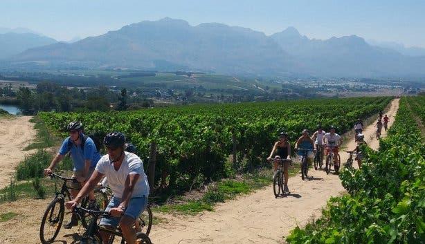 bikes n wines stellenbosch