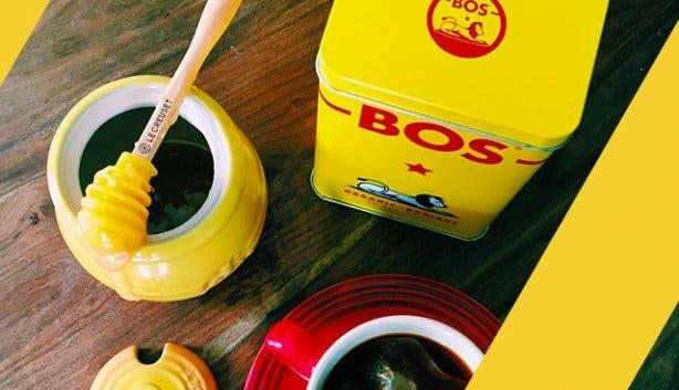 cape-town-souvenirs-Bos