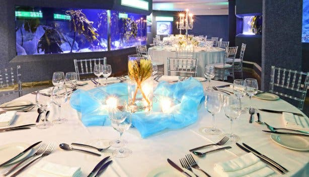 Two Oceans Aquarium Table Setting