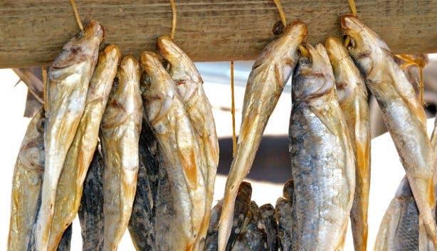 Fresh fish shops