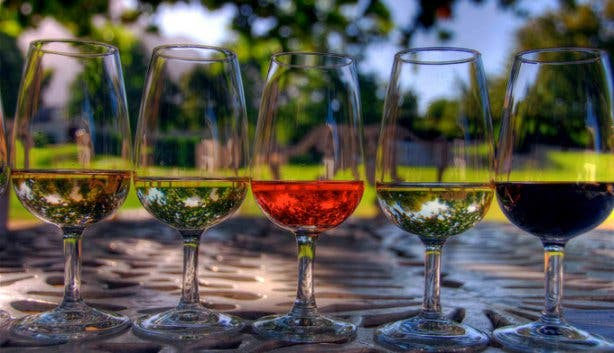 Wine Tasting Glasses in Cape Town