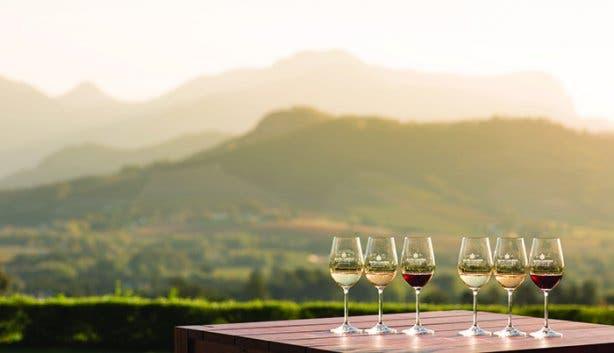 Wijn van de Kaap