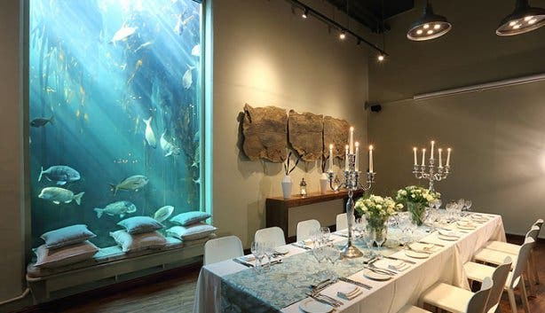 Two Oceans Aquarium Table with View