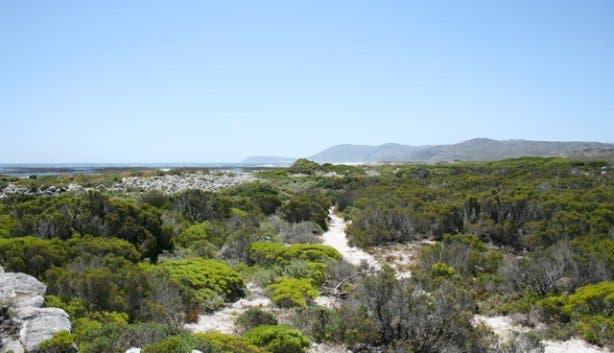 Hi Tec - Cape Point 3