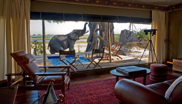 Madiba Travel new feature