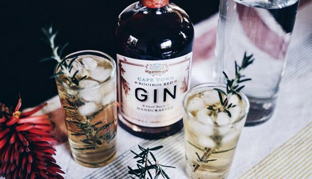 Cape Town Gin - Gin Distilleries