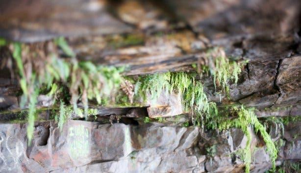 woodstock Cave hike | hi tec hike | table mountain hike