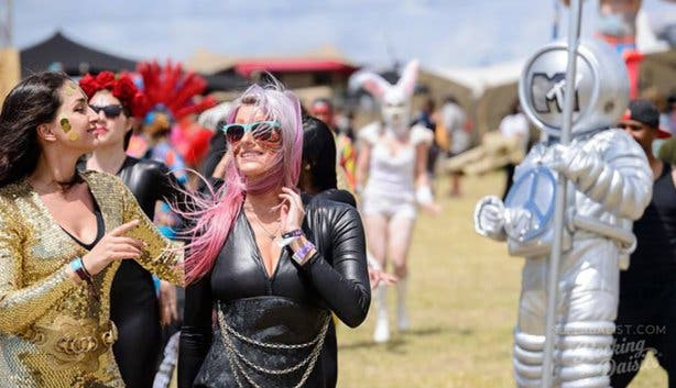 Rocking the Daisies - 1