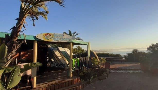 island-vibe-surf-school