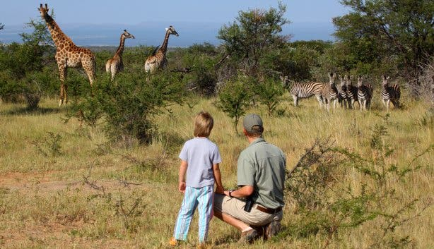 Rondreizen met kinderen door Zuid-Afrika