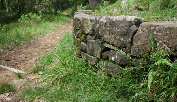 Newlands contour path