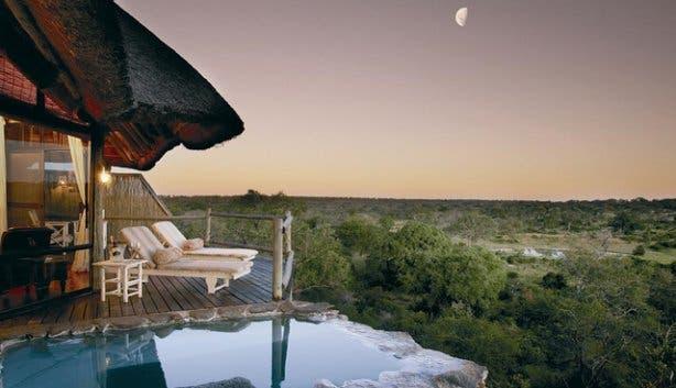 Madiba - Leopard Hills