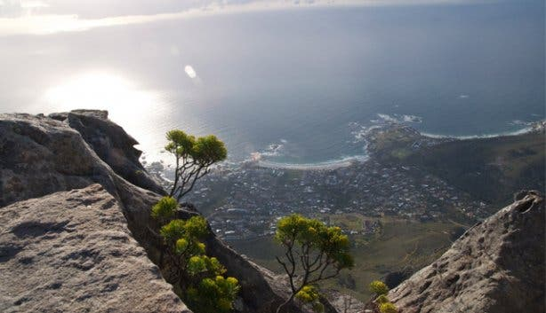 tablemountain5