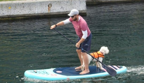Paddle_For_Paw