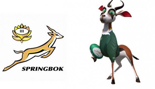 Springboks SA rugby