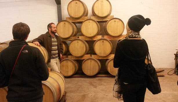 wine flies cellar tour