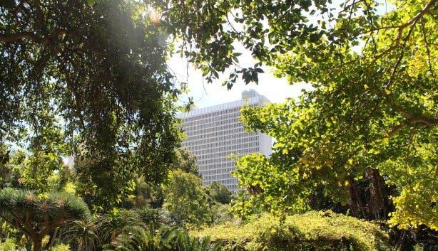 Companys Garden Cape Town Kapstadt Photo: Elisabeth Thobe