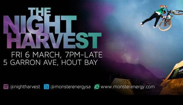 The Night Harvest in Hout Bay