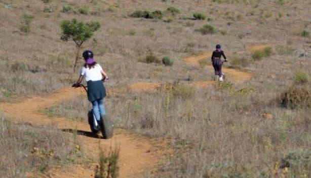 Scootours Flow Trail team building