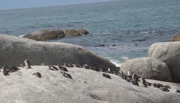 bouldersbeach2