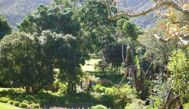 Kirstenbosch Hi Tec 14