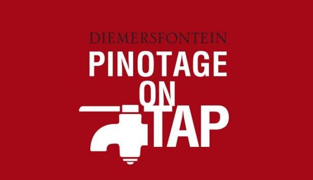 Pinotage on Tap Wine Festival Diemersfontein