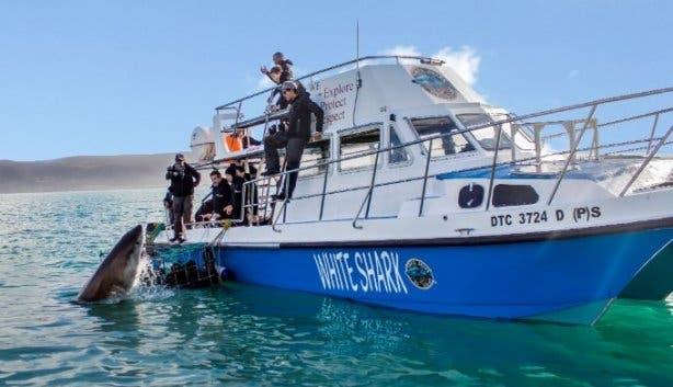 WSDC Boat