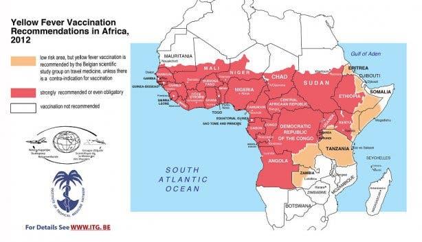 gele koorts zuid-afrika