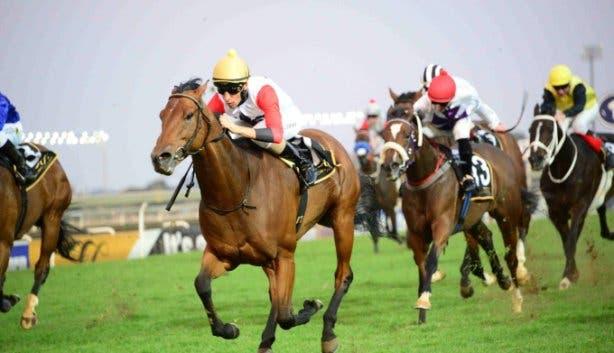 Cirque_royale_horses