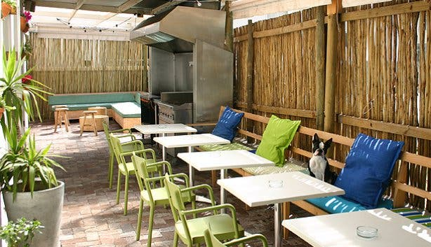 Outdoor Area of Backyard Grill