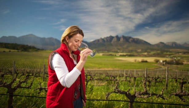 Corlea Fourie Winemaker At Bosman Winery SA