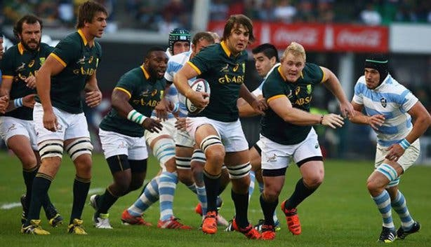 Springboks Rugby World Cup 2