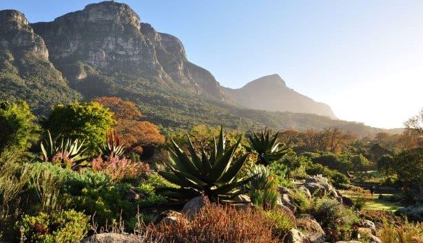 botanische tui
