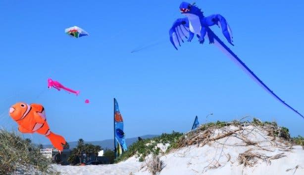 Kite Festival 2021_Dolphin Beach
