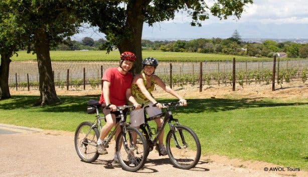 AWOL Constantia Winelands Tour