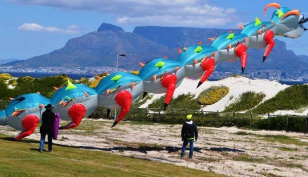 Kite Festival 2021_big kite