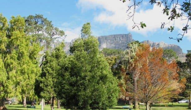 Cape Town Parks
