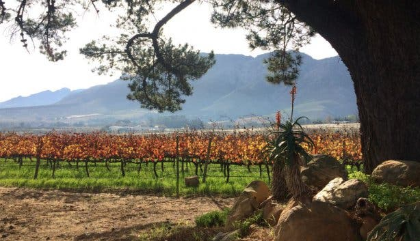 Haskell Winefarm 2