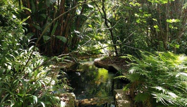 Stellenberg Gardens