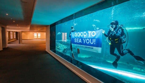 aquarium_avenue