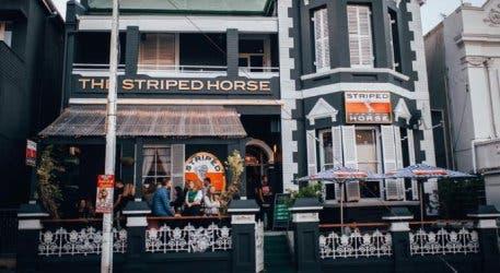 striped_horse_kloof