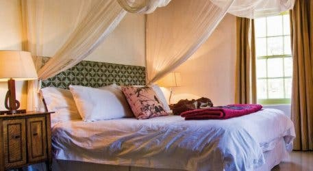 An Affordable Karoo Summer Special Foodie Families, Couples Will Love