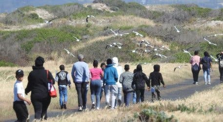 The Cape Town Environmental Education Trust Is Back With The 7th Annual False Bay Birdathon