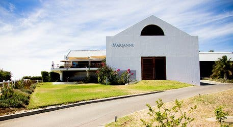 marianne wine estate 6